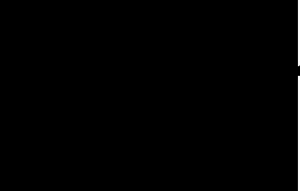 Nudo negro